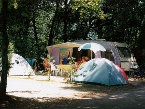 emplacements ombragés du camping la Butte en dordogne-périgord Noir proche de sarlat à la roque gageac